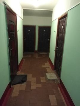 Продается 1-комн. квартира, Душинская, 14 - Фото 3