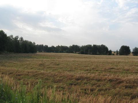 Продажа земельного участка 5,5 га сельхоз вблизи каскада озер - Фото 5