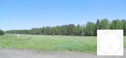 Участок площадью 4,3 гектара первая линия федеральной трассы Р-255 - Фото 3