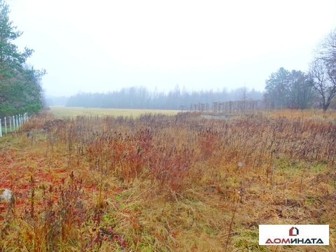 Участок 12 соток ИЖС в Краснознаменке - Фото 2