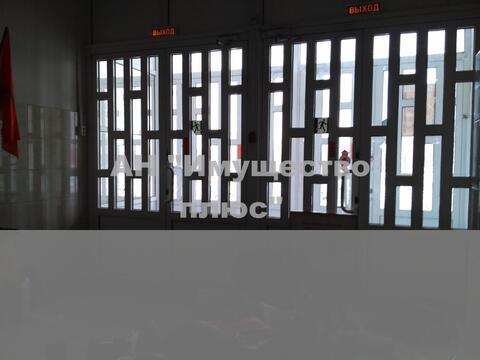 Сдается помещение под учебный центр или офис 250 кв.м, пр Калашникова - Фото 2