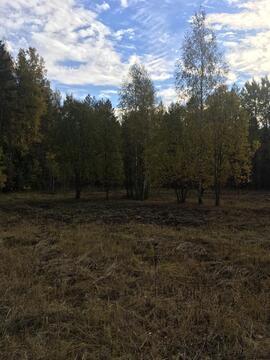 24 сотки у леса, Прописка, д. Маренкино - Фото 1