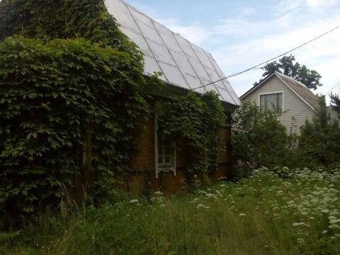 Продам дачу в Наро-Фоминском районе дер.Шапкино - Фото 3