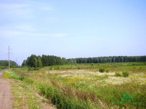 3,5 Га в дер.Бельково - 95 км Щёлковское шоссе - Фото 1
