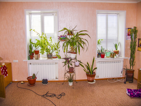 Квартира, ул. Розы Люксембург, д.128 - Фото 2