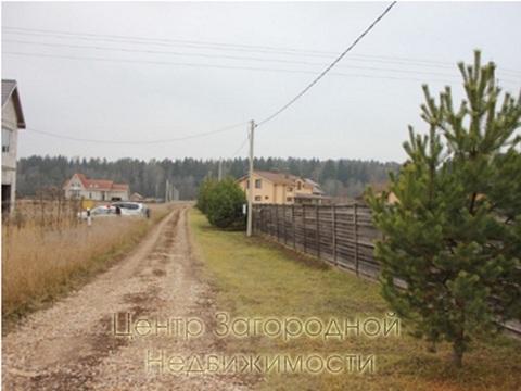 Участок, Можайское ш, 65 км от МКАД, Васильевское д. (Рузский р-н). . - Фото 3