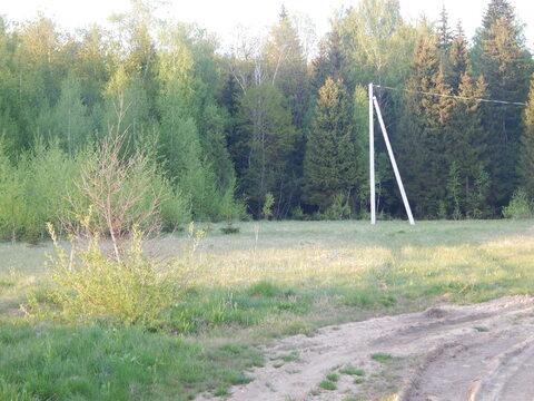 Участок 20 соток в п. Дорохово около леса - Фото 1