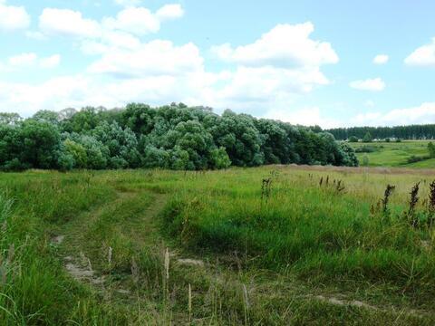 Первомайский поселок участок 247 гектар Ясногорский район - Фото 3