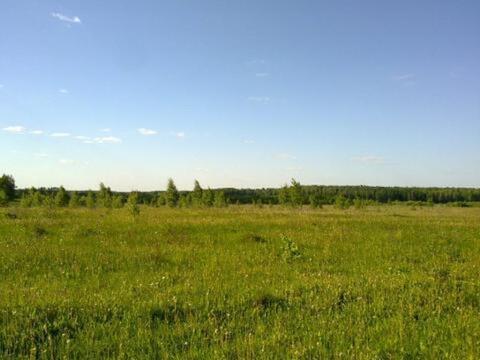 Земельный участок пром.назначения 26,6 Га в Калужской обл. п. Бетлица - Фото 3