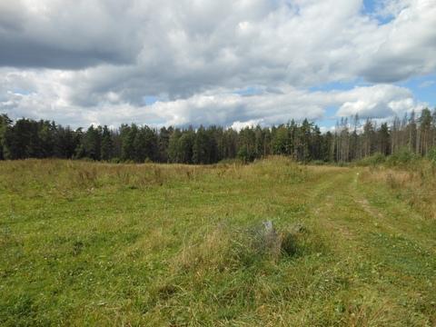 4 земельных участка общей площадью 6,07 га - Фото 3