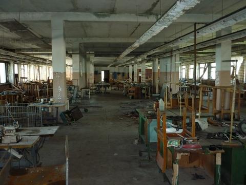 Продам коммерческую недвижимость в Рязанской области в Михайлове - Фото 4