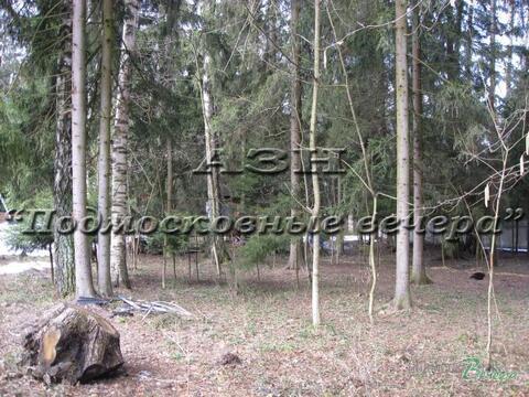 Минское ш. 37 км от МКАД, нии Радио, Участок 12 сот. - Фото 2