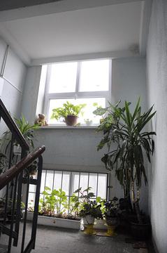 Продам с ремонтом 2-ком, квартиру в Гурьевске. ул.Красная - Фото 2
