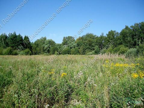Можайское ш. 31 км от МКАД, Часцы, Участок 30 сот. - Фото 1