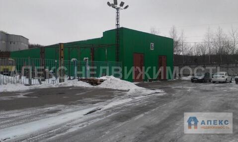 Продажа помещения пл. 5790 м2 под склад, производство, Домодедово . - Фото 5