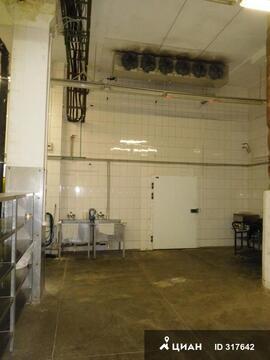 Производственное помещение 370 кв.м. - Фото 2