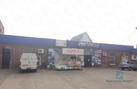 Продажа торгового помещения, Краснодар, Ул. Центральная - Фото 4
