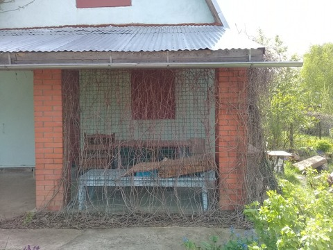 Продается дачный участок с домом (г.Кашира) - Фото 3