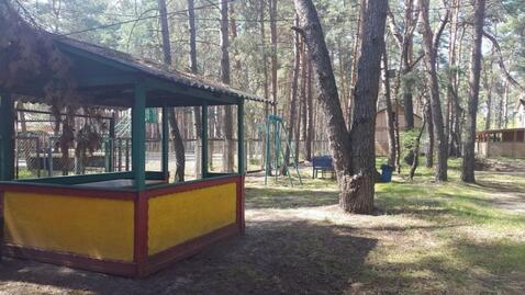 Продажа псн, Новая Таволжанка, Шебекинский район - Фото 2