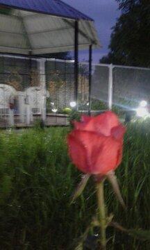Продажа дачи, Георгиевск, 10-я линия ул. - Фото 1
