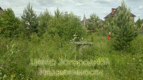 Участок, Пятницкое ш, Новорижское ш, Ленинградское ш, 35 км от МКАД, . - Фото 2