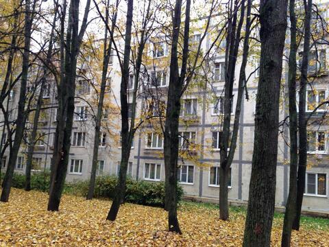 Комната ул.Профсоюзная д.36 - Фото 1