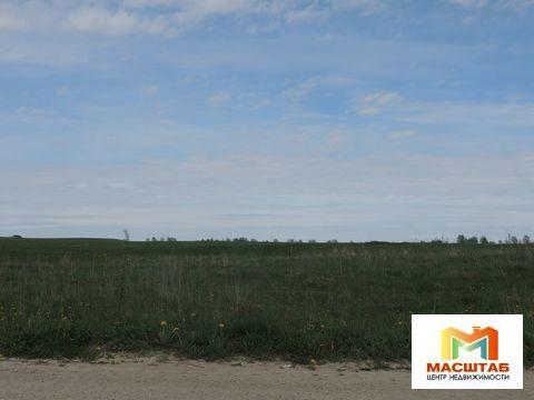 Земли сельхозназначения в Гостилицах - Фото 1