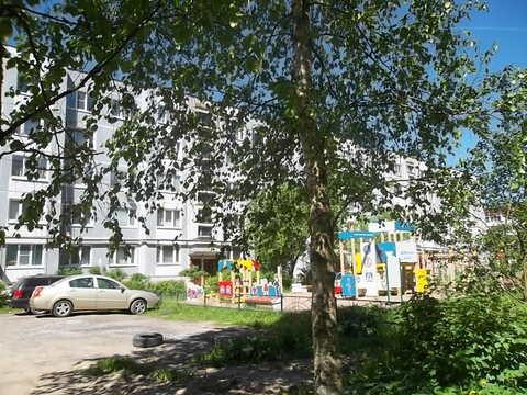 1-комнатная квартира в Тосно - Фото 1