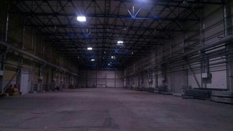 Сдам производственное помещение 12000 кв.м, м. Ладожская - Фото 4