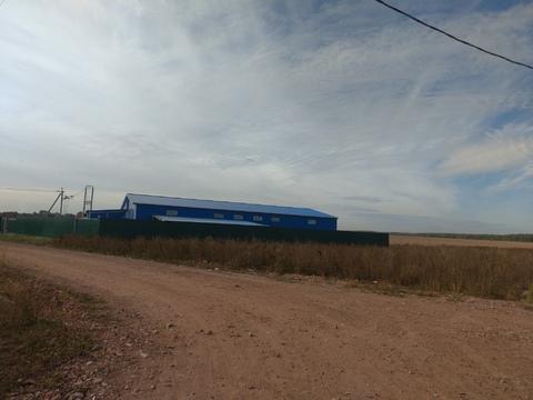 Промышленные земли от 14 соток Раменский район - Фото 4