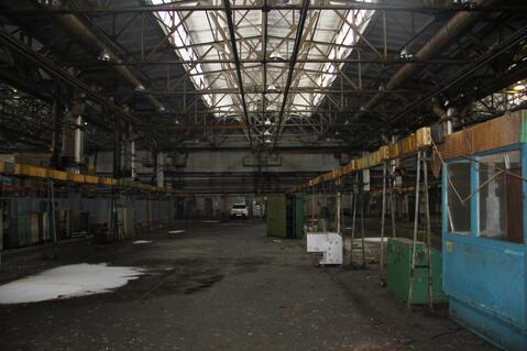 Сдам производственно-складскую площадь 5000 кв.м. - Фото 4