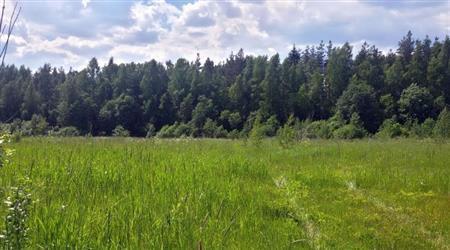 12 мин от Сосново, Удальцово , продам в рассрочку - Фото 2
