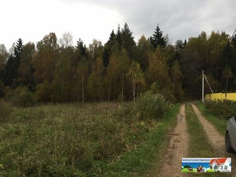 Продаю лесной участок в Московской области - Фото 4