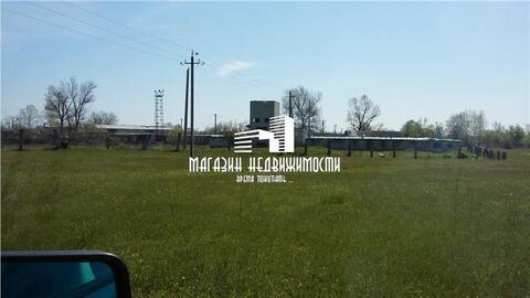 Продам ферму 8.5 га, земли сельхозназначения (СНТ, ДНП), 1 км до ., Земельные участки в Прохладном, ID объекта - 201107999 - Фото 1