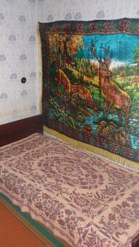 Двухкомнатная квартира переделанная в трех ул Красно-кокшайская - Фото 3