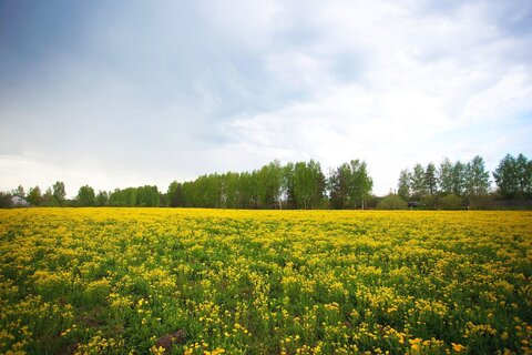 Участок для ИЖС в коттеджном поселке «Лебяжий Луг» в 2 км от Иванова - Фото 3