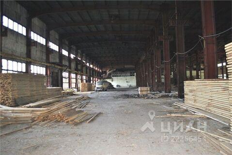 Производственное помещение в Тюменская область, Тюмень Старый . - Фото 1