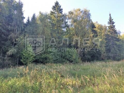 Лесной участок 16 сот. - Фото 3
