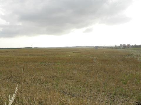 Продажа участка, Липецк, С.Троицкое - Фото 4
