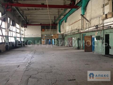Аренда помещения пл. 805 м2 под склад, производство, , Чехов . - Фото 4