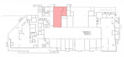 Сдам торговое помещение 105 кв.м, м. Приморская - Фото 4