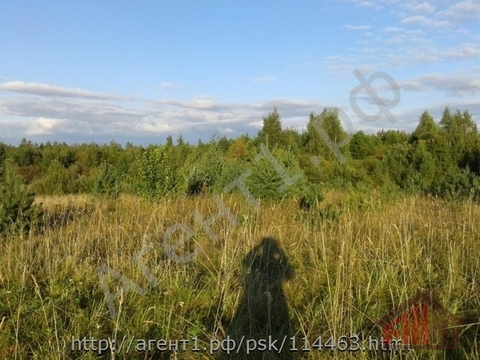Продажа участка, Псков, Литовиж - Фото 3