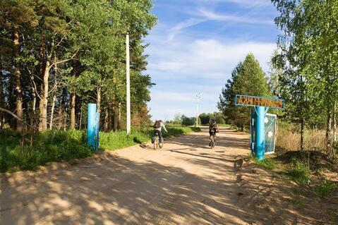 Продам земельный участок 8 соток (ЛПХ), д.Владимироовка - Фото 3