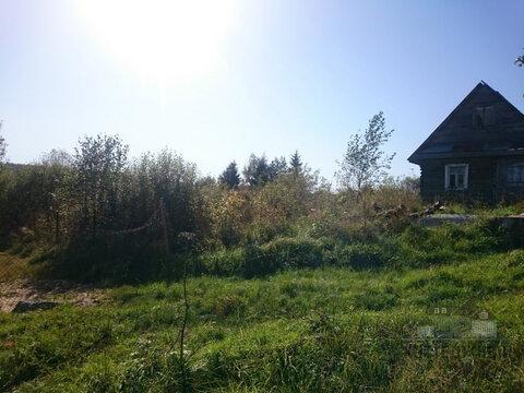 Продажа земельного участка в Маловишерском районе, д. Медведь - Фото 3