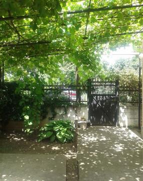 Продаю дом в р-н с. Богдановка. Общая площадь 70 м. кв. - Фото 5
