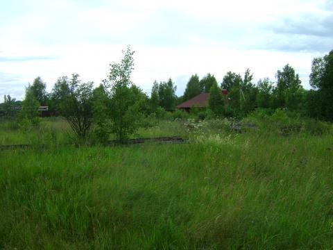 Участок 23 сотки ИЖС с.Городня 15 км от Твери - Фото 3