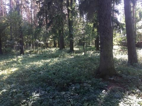 Участок в Голицыно - Фото 5