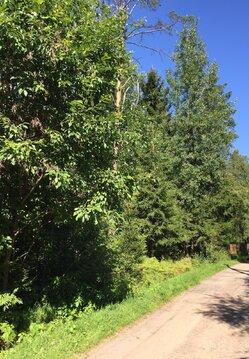 Предлагаем участок 50 соток в ДНП Медное озеро в 18 км от КАД - Фото 1