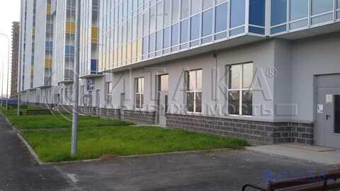 Аренда псн, Кудрово, Всеволожский район, Пражская ул - Фото 2