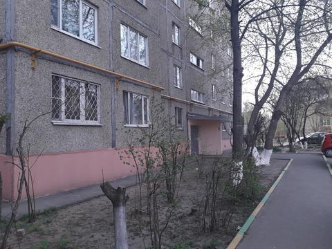Сдам 3х.ком.кв. г. Домодедово (Павелецкое направление) - Фото 1